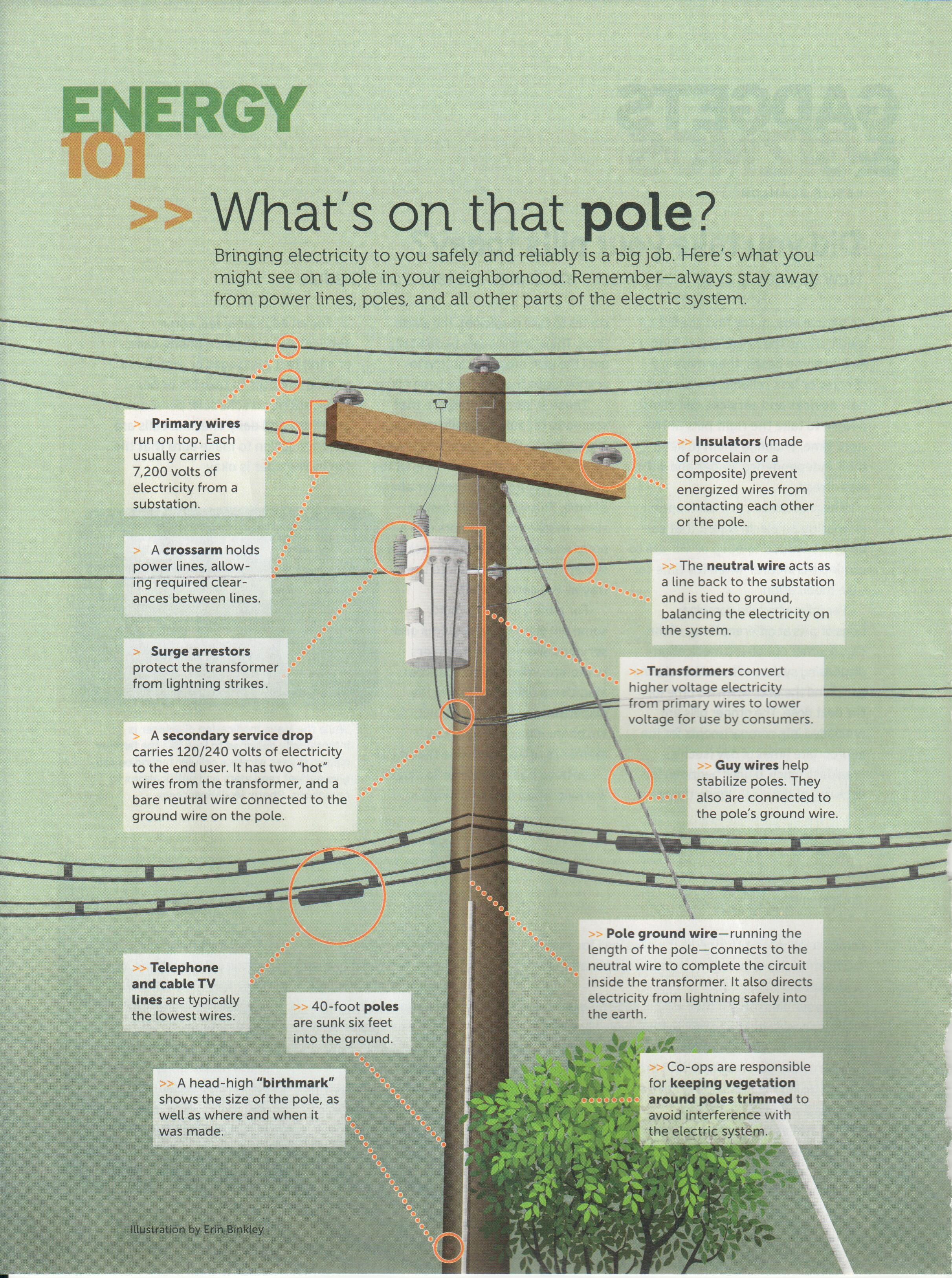 Infographic about what is on a utility pole